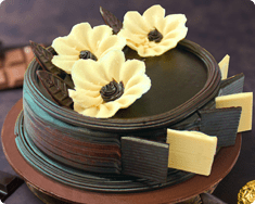 Choco Ivory Cake