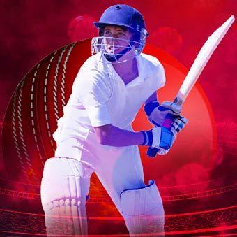 Paypal Cricket Bonanza